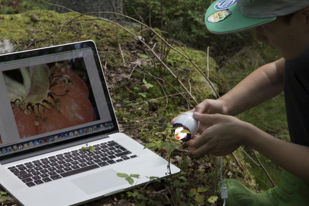 Oppilas metsässä tietokoneeseen kytketyn maastomikroskoopin kanssa.