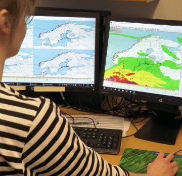 Tutkija istuu tietokoneella muokkaamassa siitepölyennustetta. Tietokoneen näytöllä näkyy kartta, jonka vyöhykkeet kuvaavat ilman vaihtelevia siitepölypitoisuuksia Pohjois-Euroopassa.