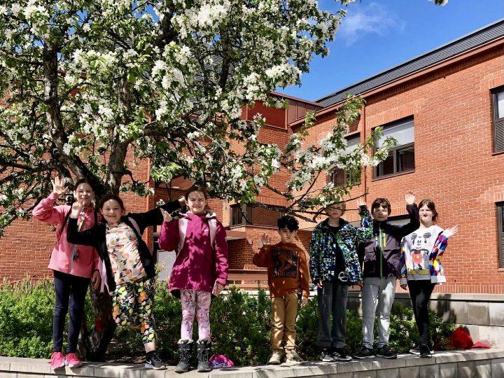 Oppilata heiluttamassa koulupihalla omenapuun juuressa